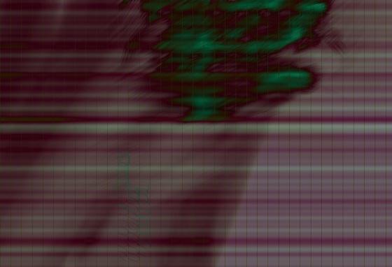 20130811-072350.jpg